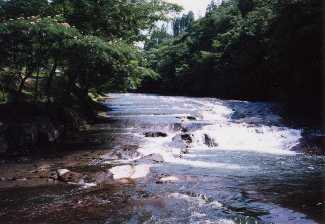 ゆうすい自然の森