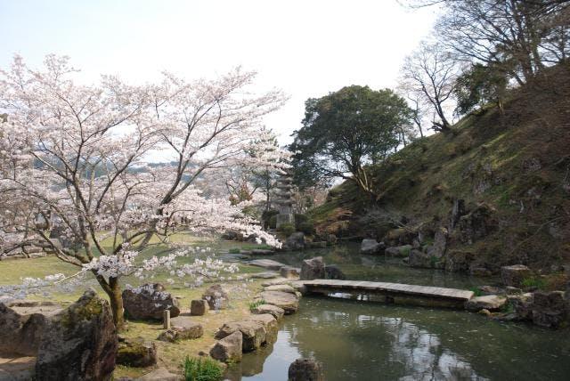 三島公園 春