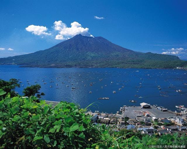 垂水・海潟漁港から望む桜島
