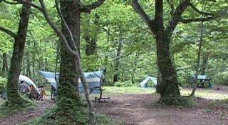 奥銀山キャンプ場