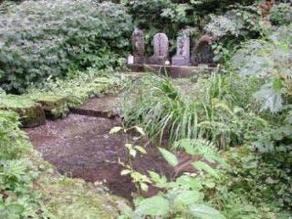 大崎滝谷の水