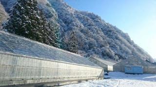 雪国アグリパーク 湯沢いちご村