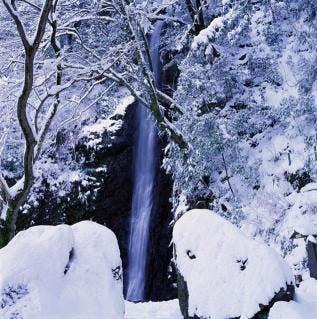 養老の滝(冬)