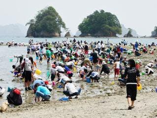 向井 黒の浜