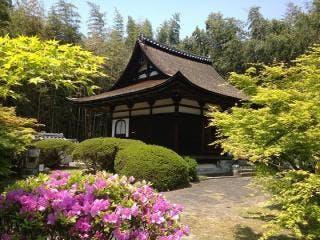 春の芦浦観音寺
