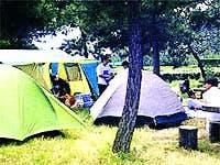 公共マリーナキャンプ場