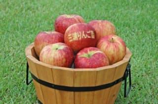 三浦りんご園