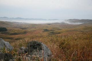 秋吉台の雲海