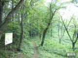 岩山散策路