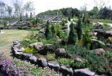 花の丘公園フラワーテラスガーデン