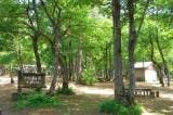 おぐに森林公園