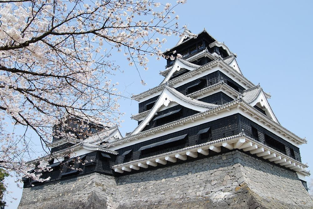 熊本城総合事務所